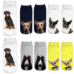 Cartoon Funny Dog Socks (All Proceeds Go Towards Saving Animals)!