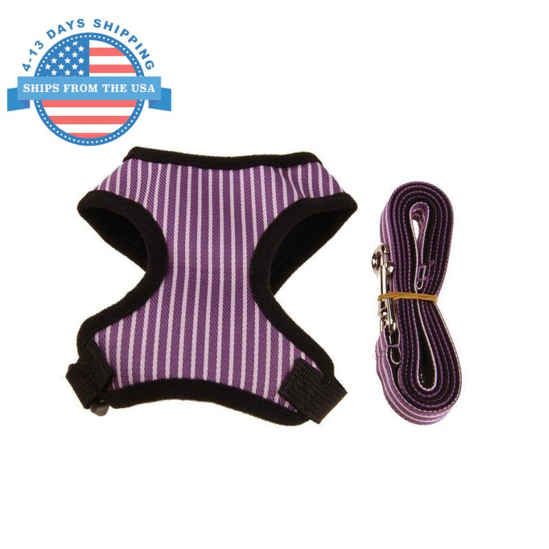Striped Vest Harness Purple / L Harnesses