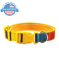 Fun Printed Collars For Pets Multicolors / Leashes