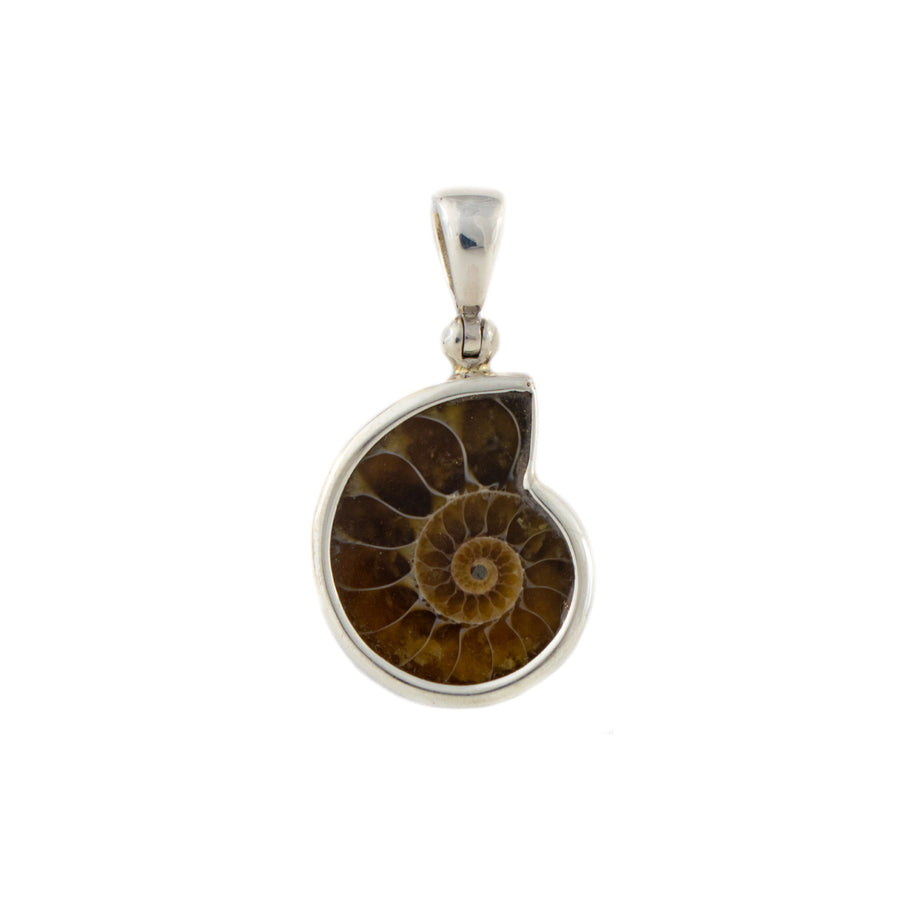 Ammonite Pendant in Sterling Silver