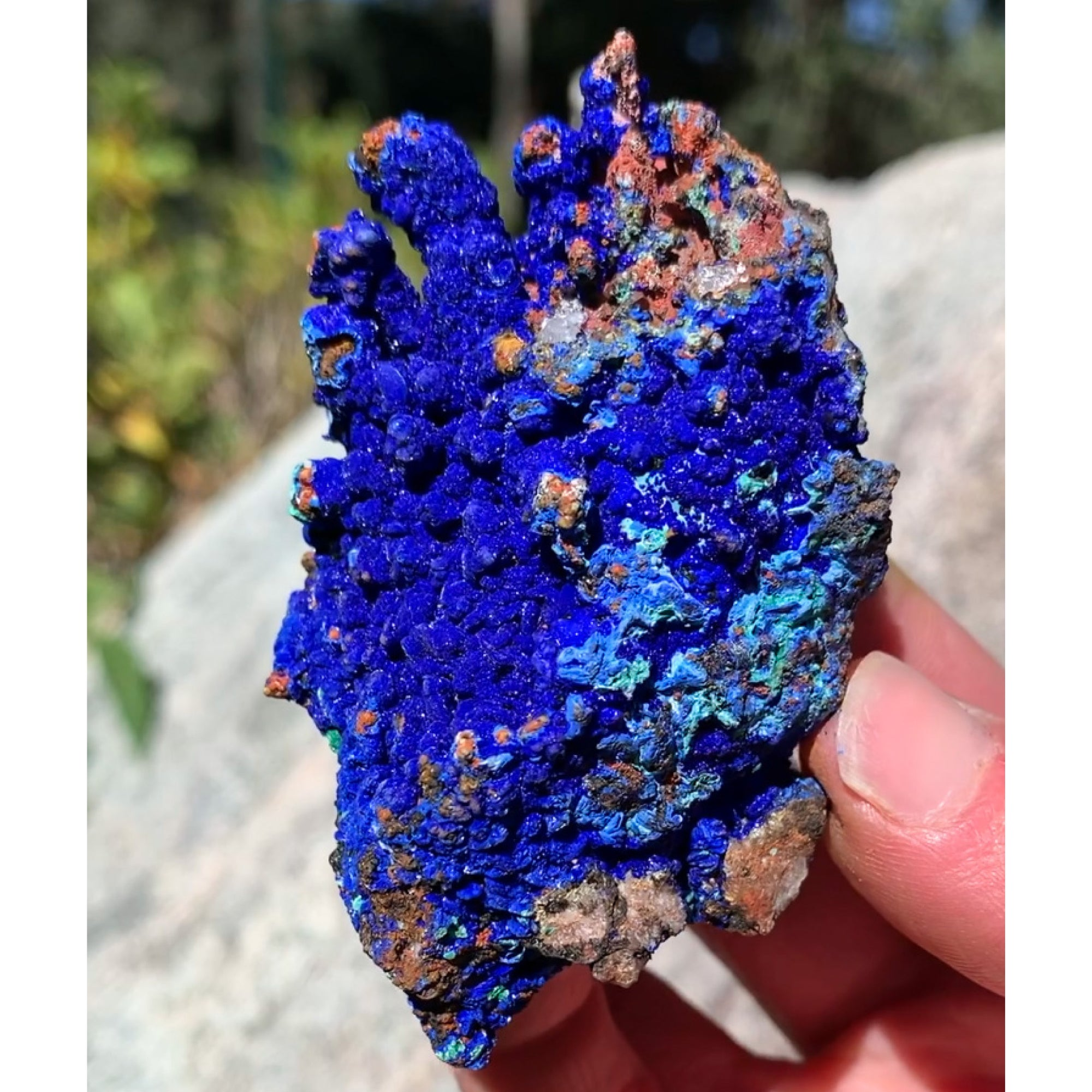 Azurite Malachite and Chrysocolla Mineral Specimen