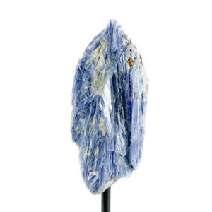 Blue Kyanite with Quartz and Muscovite from Brazilon Metal Stand