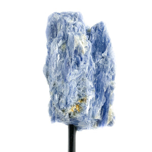 Blue Kyanite Crystal with Muscovite and Quartz on Metal Stand