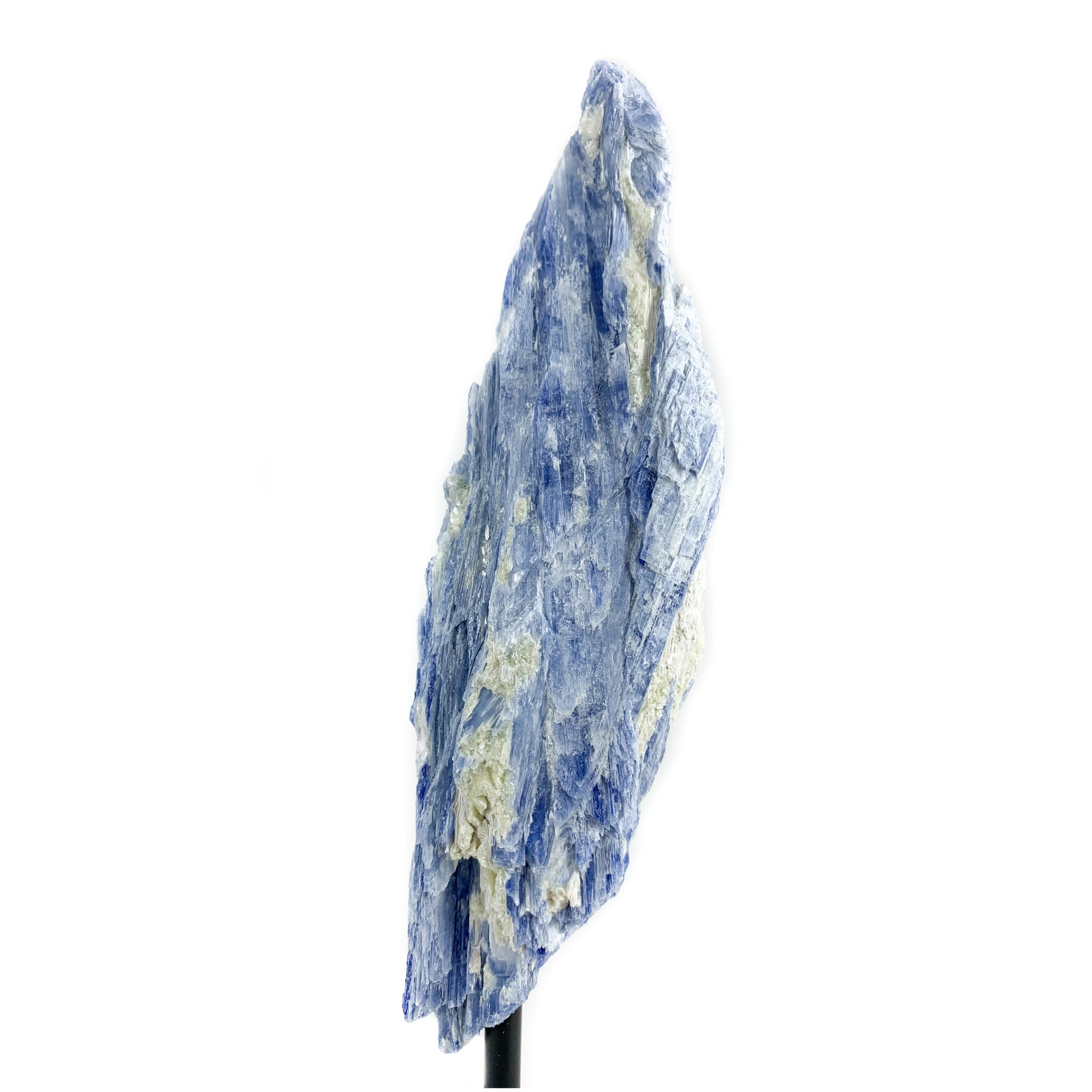 Large Blue Kyanite Crystal with Quartz and Muscovite