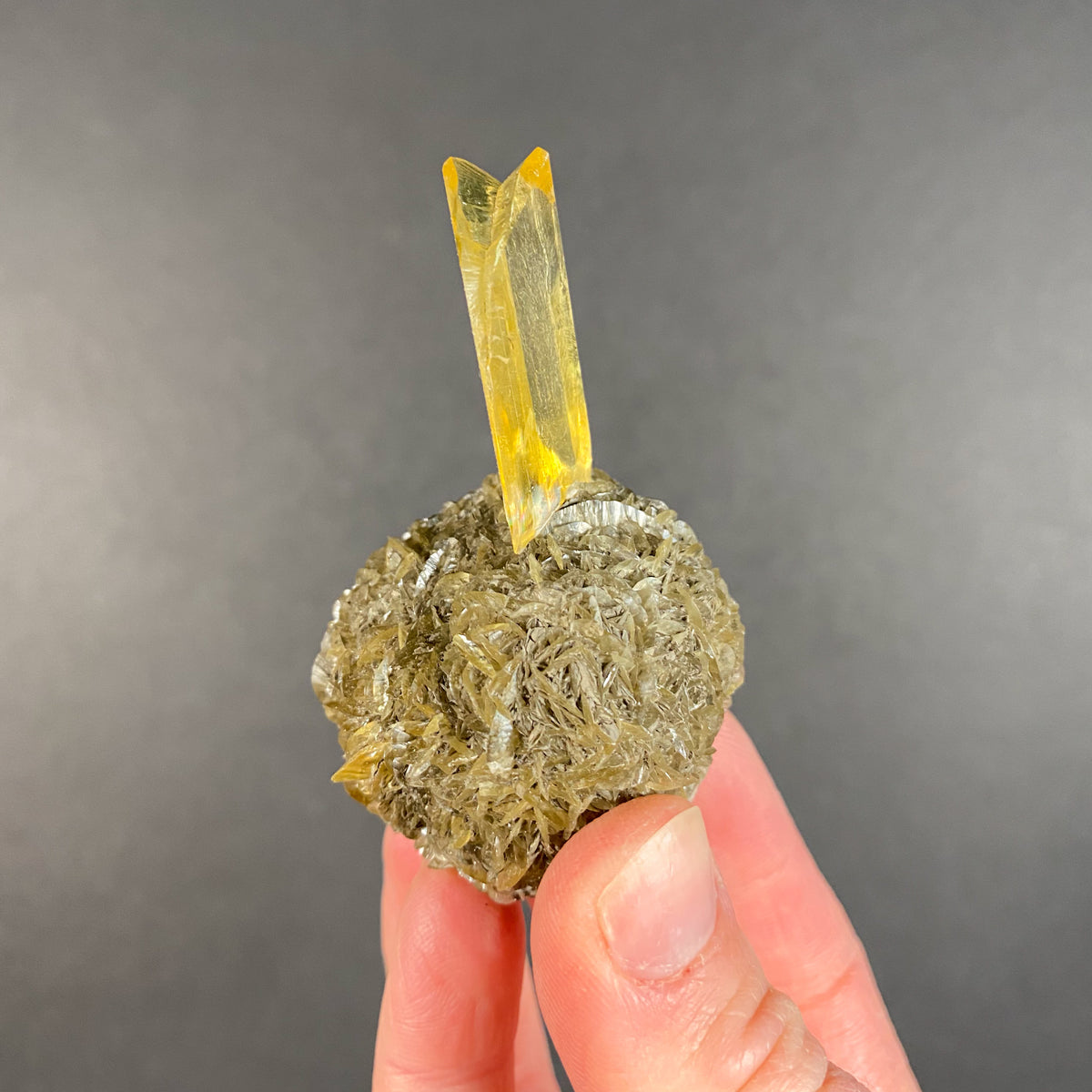 Large Yellow Selenite Crystal on Selenite Nodule from Manitoba, Canada