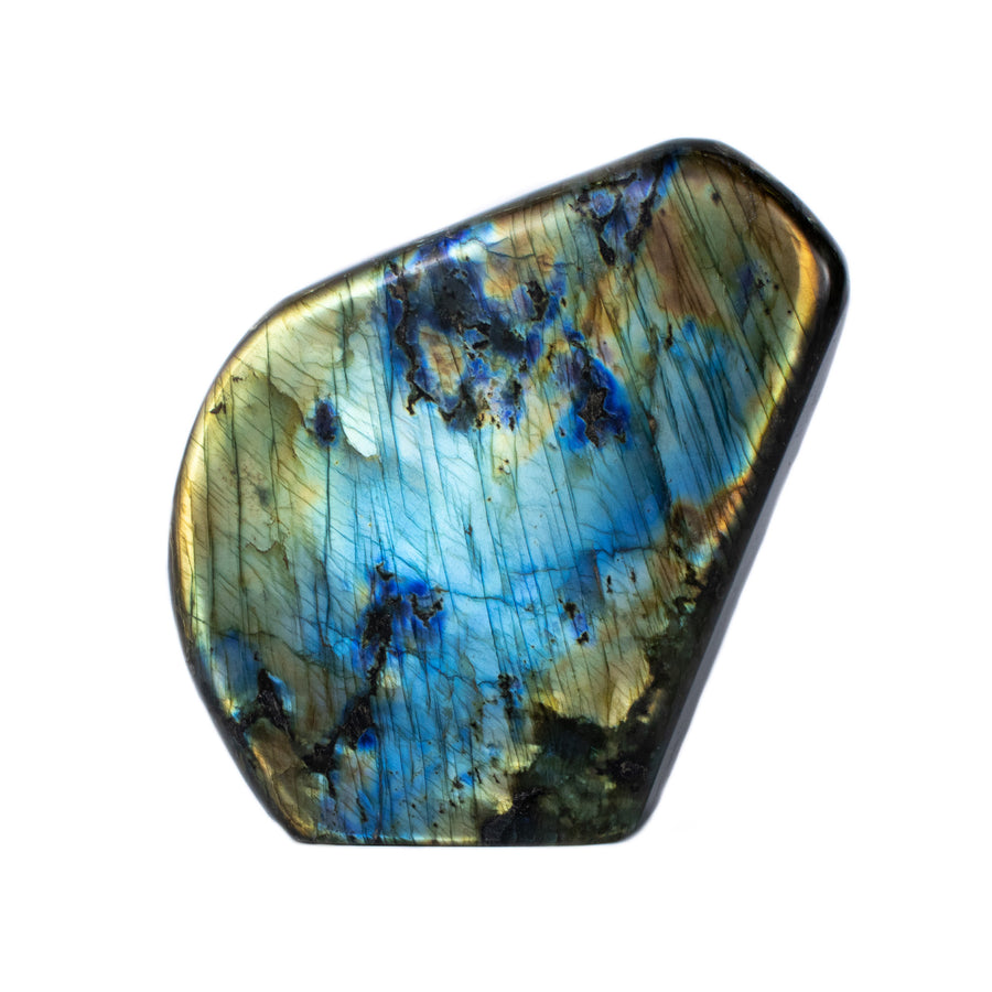 Labradorite Cut and Polished