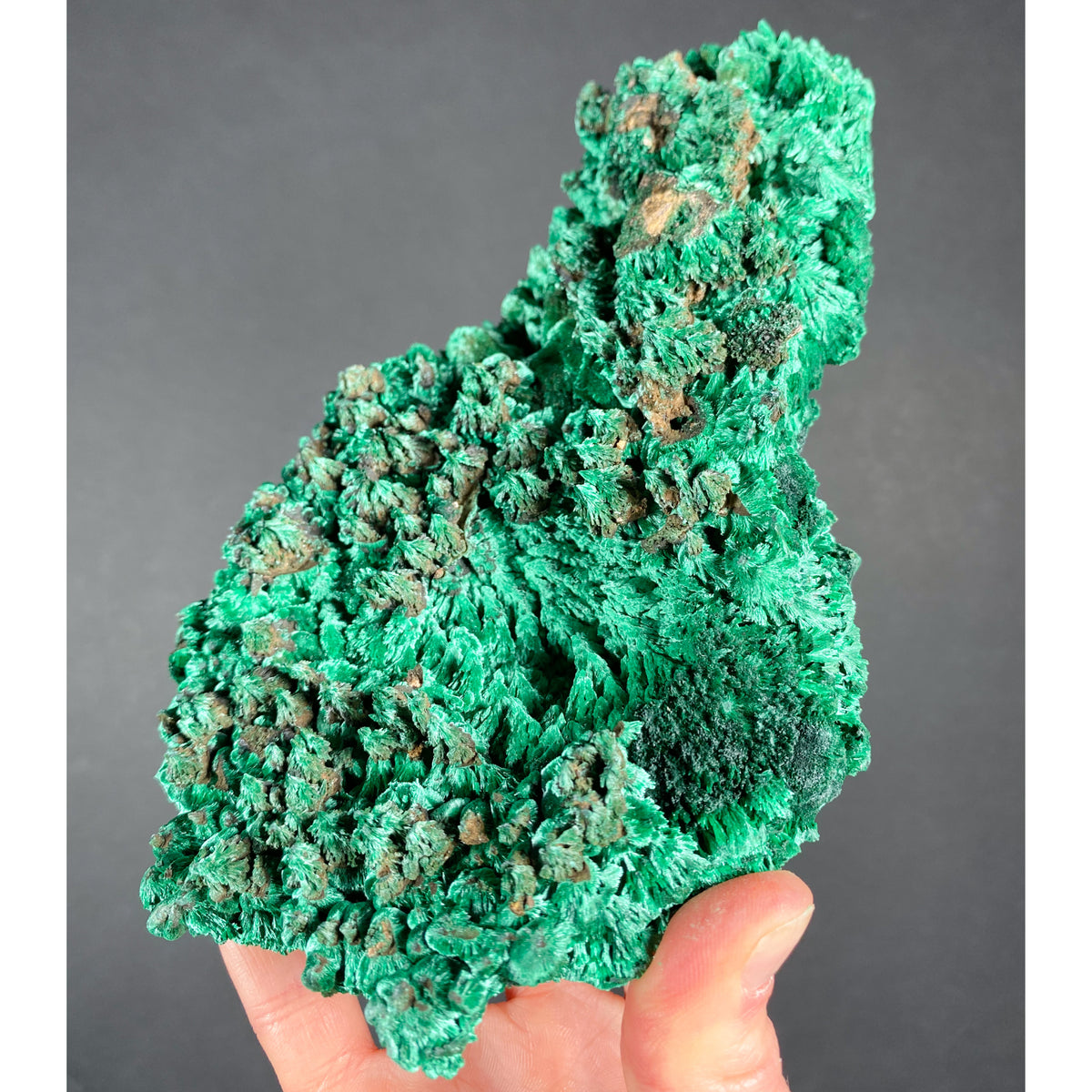 Large Raw Malachite Crystals Specimen from Democratic Republic of Congo