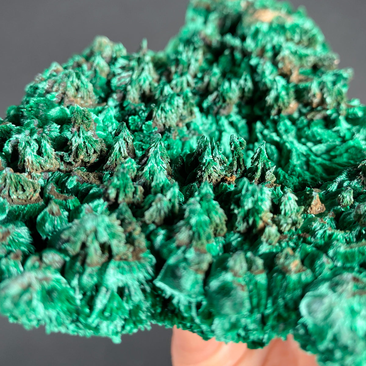 Fibrous Malachite Crystal Forest