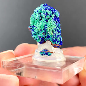 Azurite and Malachite on Quartz