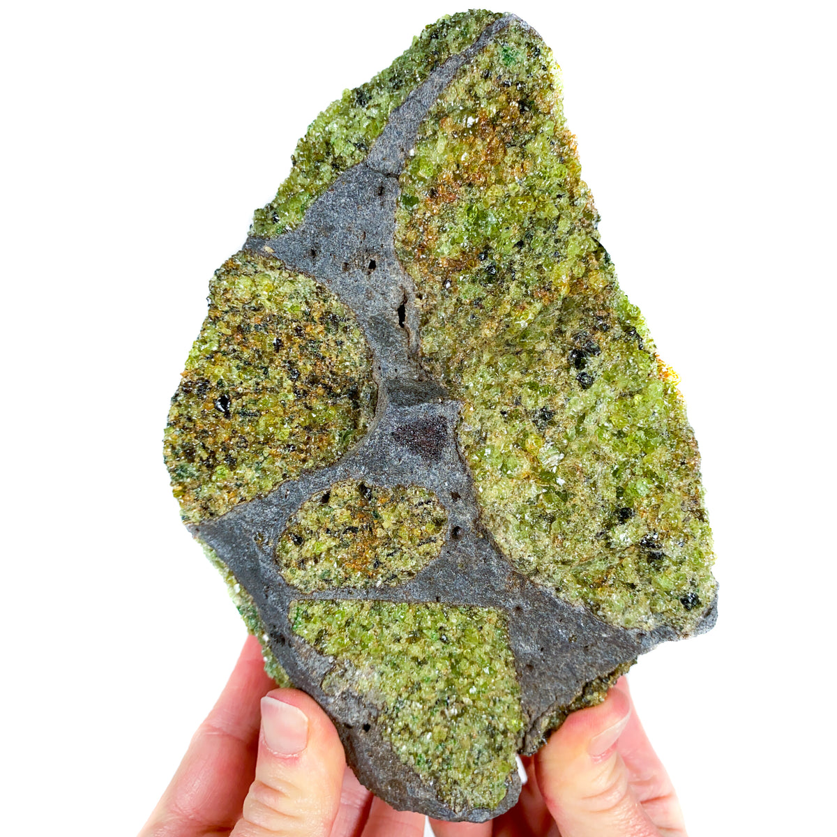 Peridot (Olivine) in Basalt, Green in Gray Rock from Arizona