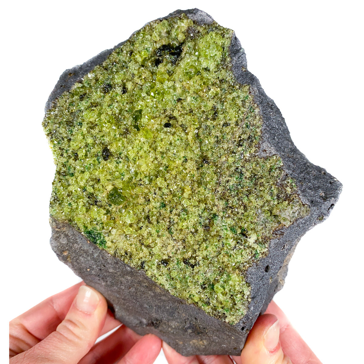 Large Peridot (Olivine) in Basalt from San Carlos Reservation Arizona