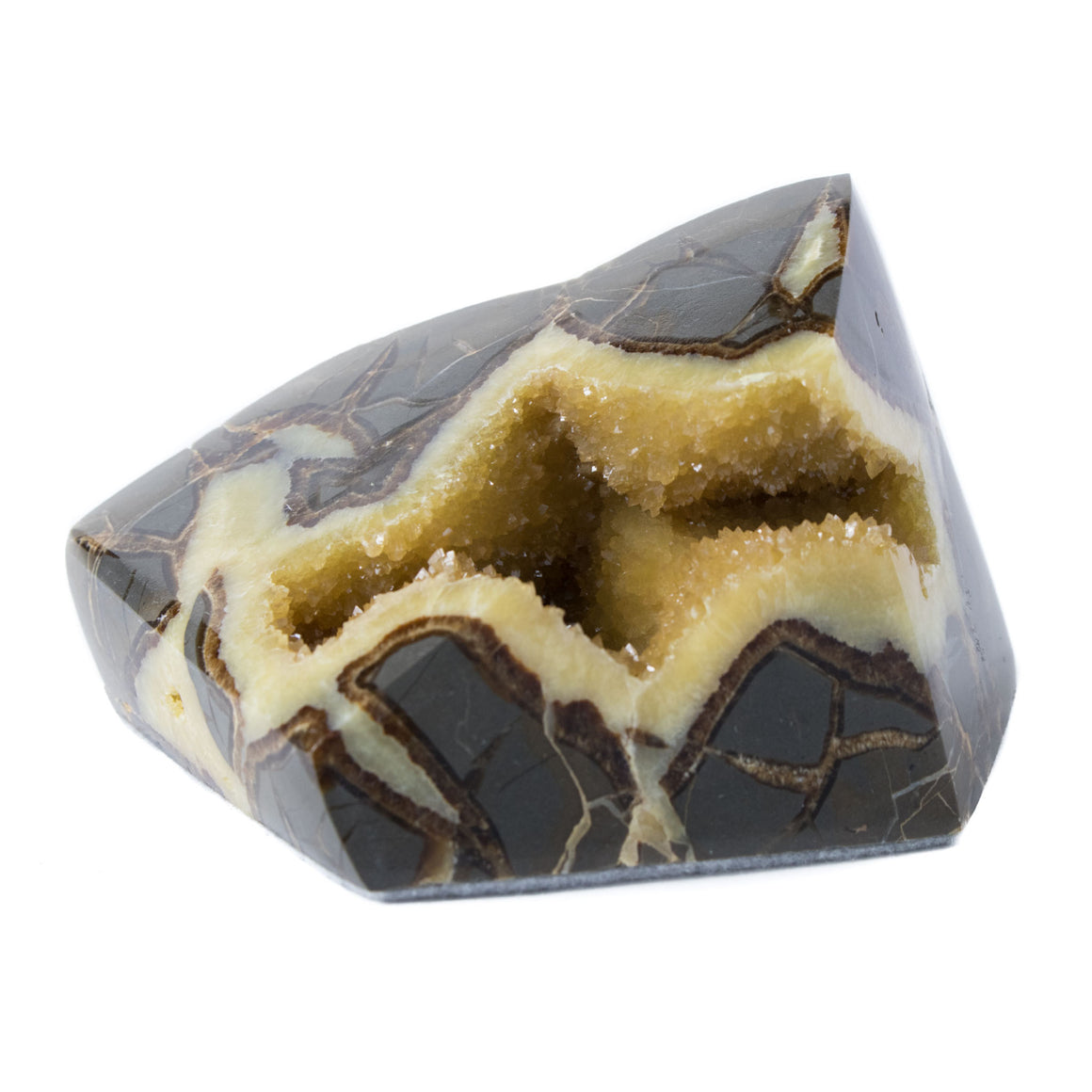 Septarian Concretion Geode, Golden Calcite Crystals