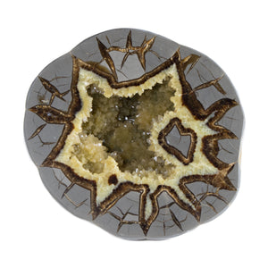 Septarian Concretion Geode, Yellow Calcite Crystals on Gray Matrix from Utah