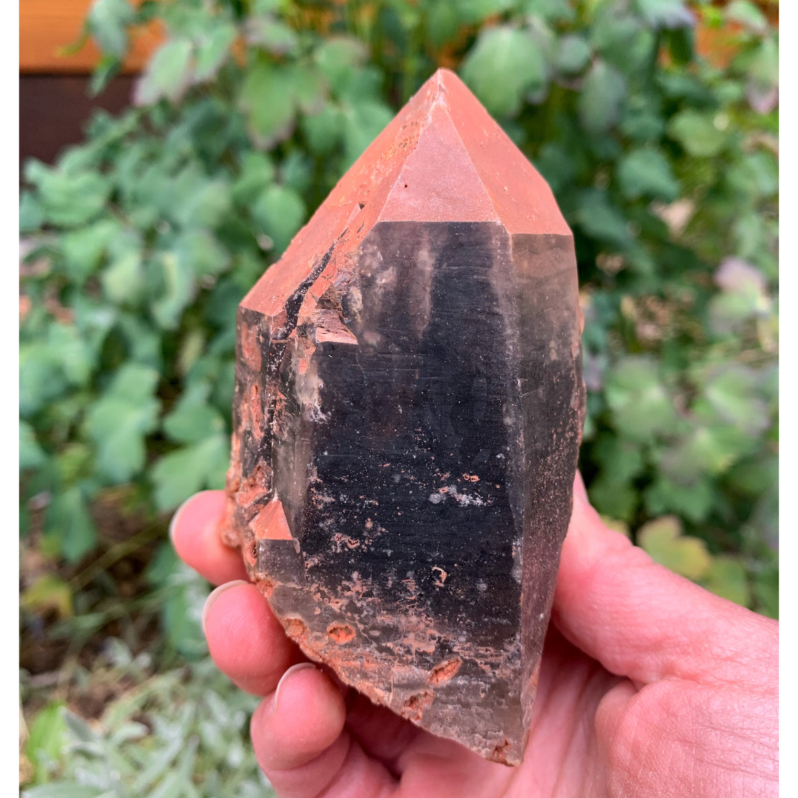Smoky Quartz Colorado