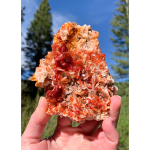 Vanadinite on Barite Crystal Cluster