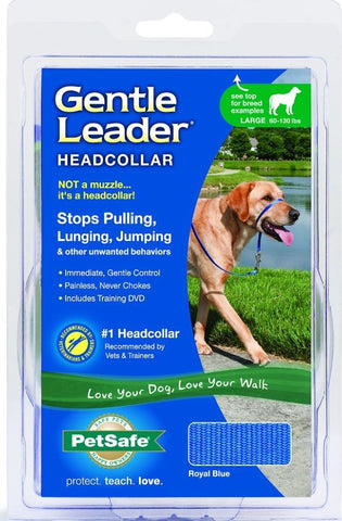 Petsafe Gentle Leader Blue Quick Release Headcollar for Dogs