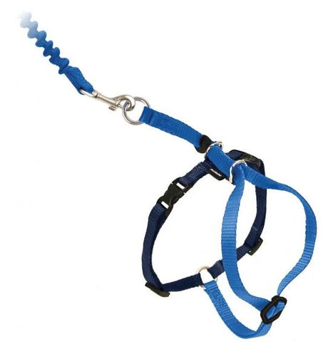 PetSafe Come with Me Kitty Royal Blue and Navy Harness and Bungee Leash for Cats