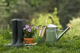 Useful Gardening Tools And Gadgets
