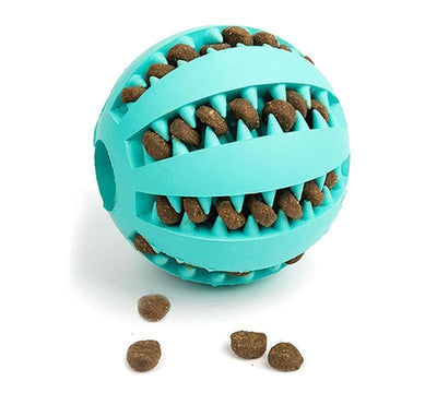 Natural Pet Chewing Toy - dailytravelvibe