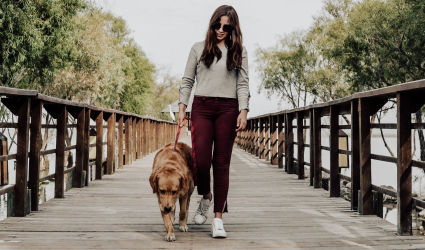 Walking Your Dog: 4 Simple Ways to Keep it Interesting