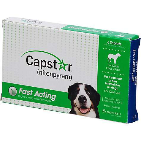 Capstar Flea Tablets for Dogs Over 25 Lbs