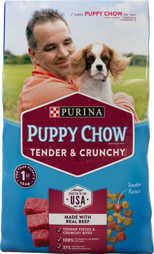 Purina Puppy Chow Tender and Crunchy Beef Recipe Dry Dog Food