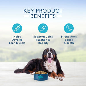 Blue Buffalo Life Protection Natural Fish & Oatmeal Recipe Large Breed Adult Dry Dog Food