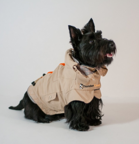 ThunderCoat For Dogs