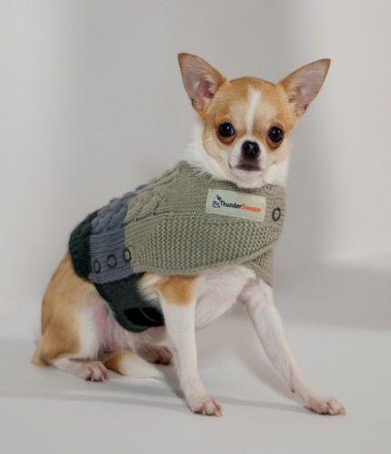 ThunderSweater For Dogs