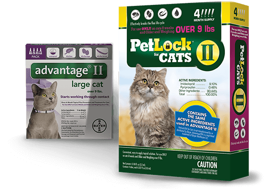 PetLock II Flea Treatment & Prevention For Large Cats Over 9lbs