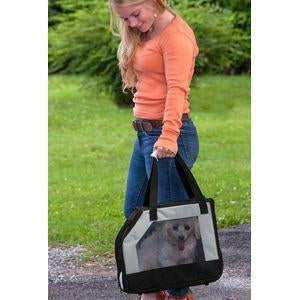 Pet Gear Car Seat/Carrier