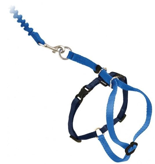 PetSafe Come with Me Kitty Royal Blue & Navy Harness and Bungee Leash for Cats