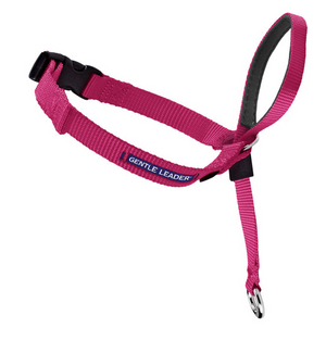 Petsafe Gentle Leader Quick Release Raspberry Headcollar for Dogs