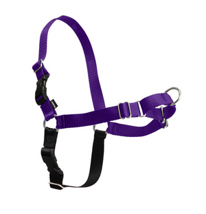 PetSafe Easy Walk Deep Purple & Black Dog Harness