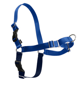 PetSafe Easy Walk Royal Blue & Navy Dog Harness