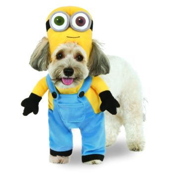 Minion Bob Arms Pet Costume