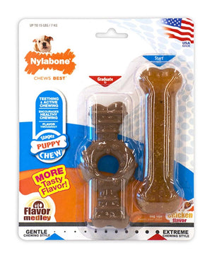 Nylabone Puppy Twin Pack