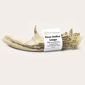 The Natural Dog Deer Antler