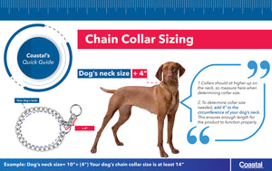 Coastal Titan Prong Training Dog Collar