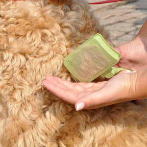 Safari Self Cleaning Dog Slicker Brush