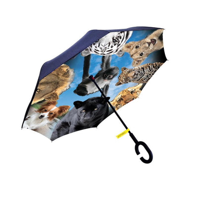 The BJWT Umbrella