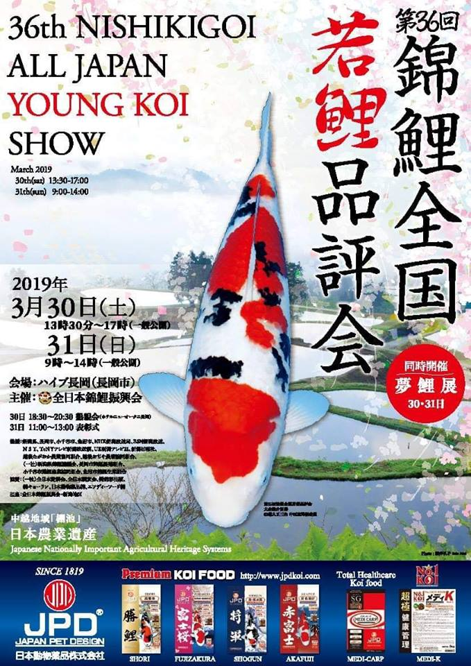 36th All Japan Young Koi Show