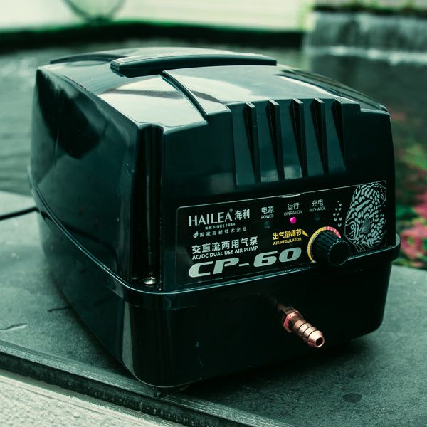 Battery Back Up Air Pumps - Worth the cost?