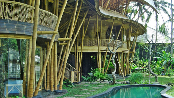 awesome bamboo house