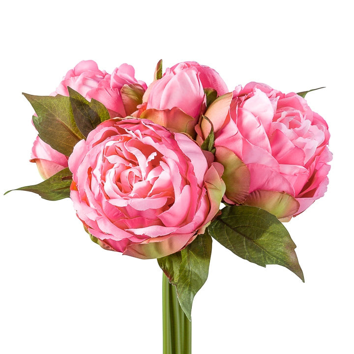 Blushing Peony 5 Bloom Bouquet