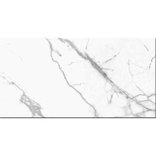 "Carrara Premium Polished Porcelain Tile 24"" x 48"""