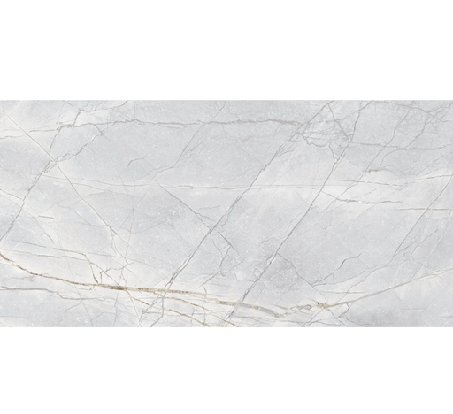 "Marmi Invisible Grey Polished Large Format Porcelain Tile 24"" x 48"""
