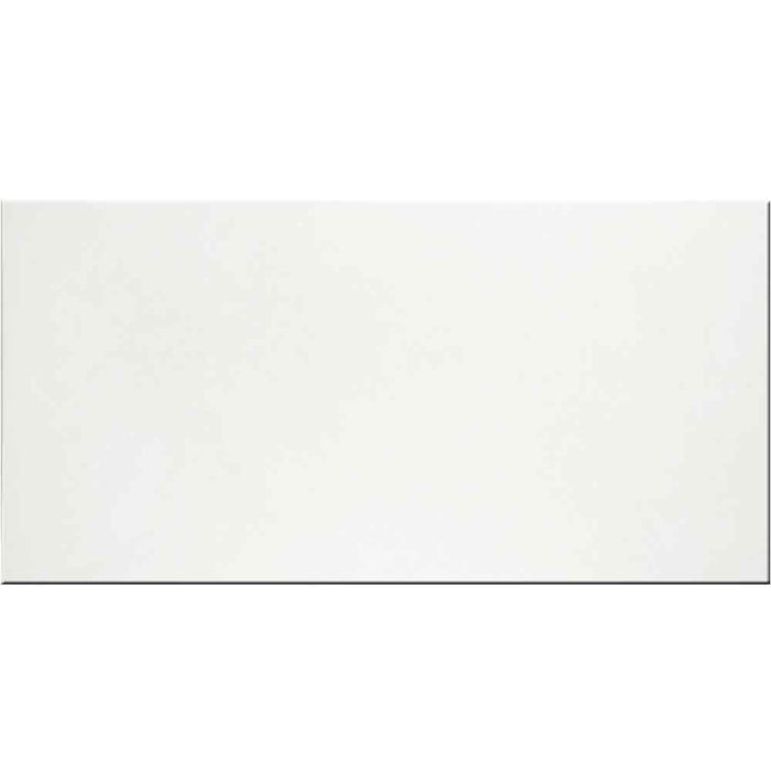 "Mono WM ATM Porcelain Floor Tile 12"" x 24"""