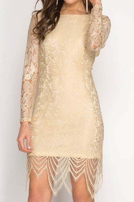 Lace Bodycon Dress with Back Cut Out