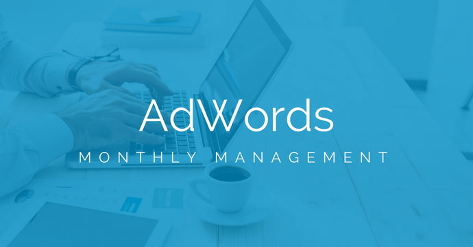 Google AdWords Basic Management (Monthly)